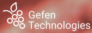 Gefen Online